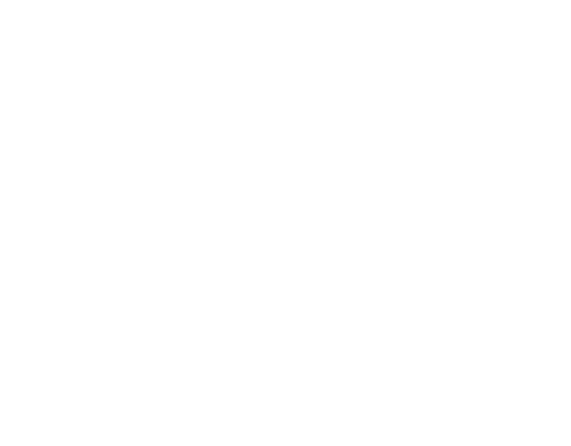 logo_NAIFA_white
