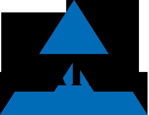 logo_NAIFAnoMark